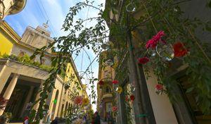 A Cremona di nuovo le 'Invasioni Botaniche'