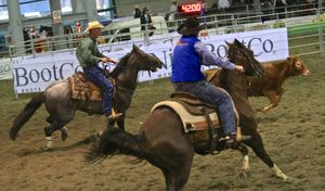 Il Salone del Cavallo Americano