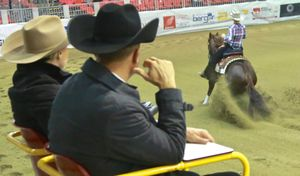 Reining Futurity e Country Christmas 2017