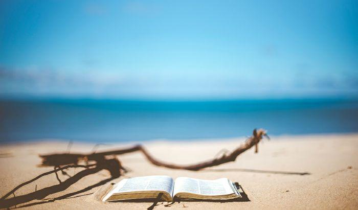 Un'estate da leggere