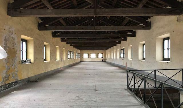 Un'immagine tratta dal progetto di riqualificazione del nuovo Campus di Santa Monica