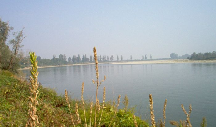 Scorcio fiume Po