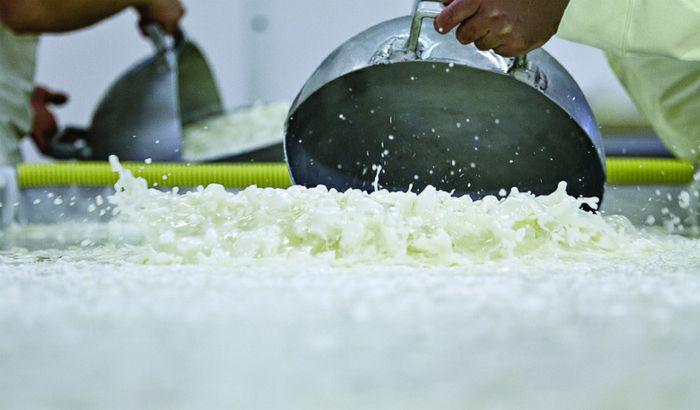 Lavorazione del latte al caseificio Angelo Croce