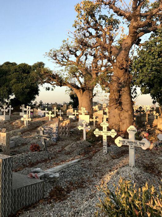 Cimitero delle Conciglie, dove riposano cristiani e musulmani